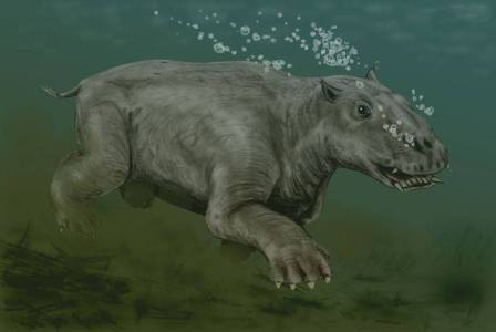 morsa prehistorica